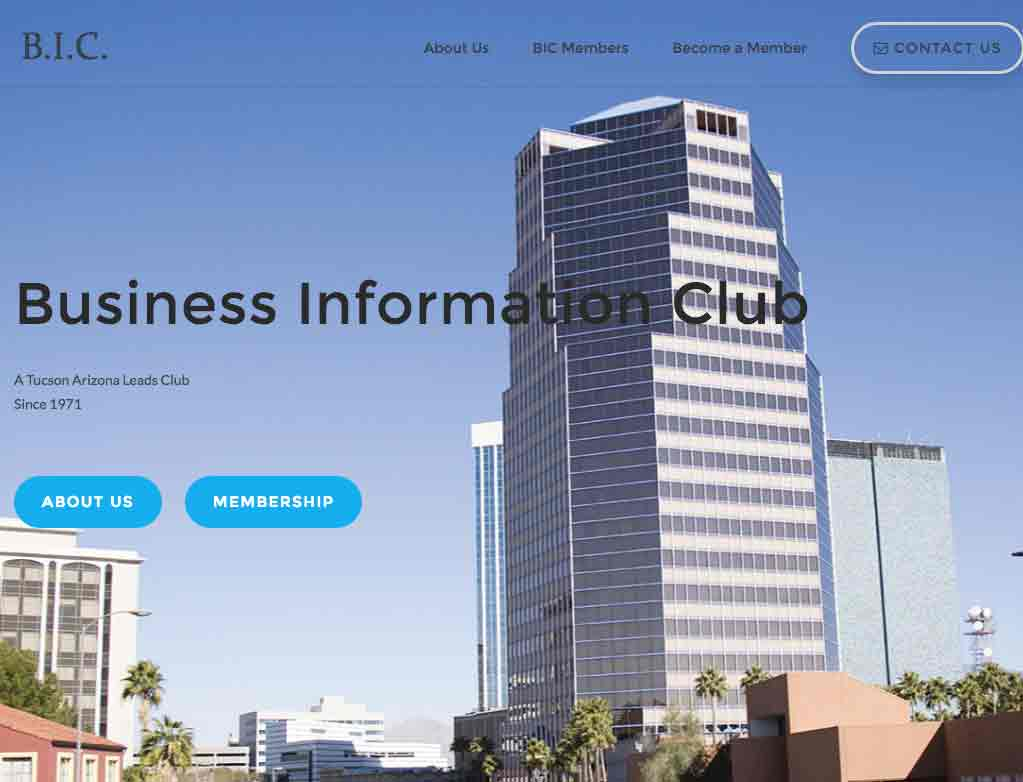 Business Information Club
